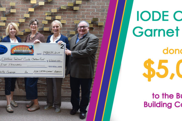 IODE Donation web banner 2019